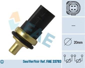 FAE 33781
