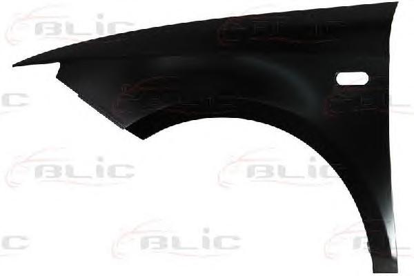 BLIC 6504-04-6621311P